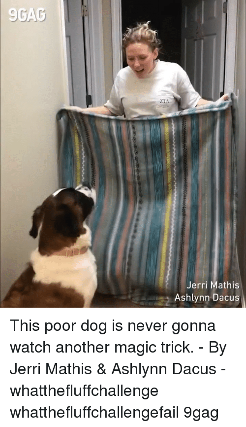 Magic Trick: 9GAC  Jerri Mathis  Ashlynn Dacus This poor dog is never gonna watch another magic trick. - By Jerri Mathis & Ashlynn Dacus - whatthefluffchallenge whatthefluffchallengefail 9gag