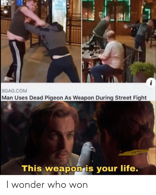 pigeon: 9GAG.COM  Man Uses Dead Pigeon As Weapon During Street Fight  This weapon is your life. I wonder who won