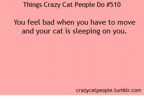 Crazy Cat People: Things Crazy Cat People Do #510  You feel bad when you have to move  and your cat is sleeping on you  crazycat people tumblr com