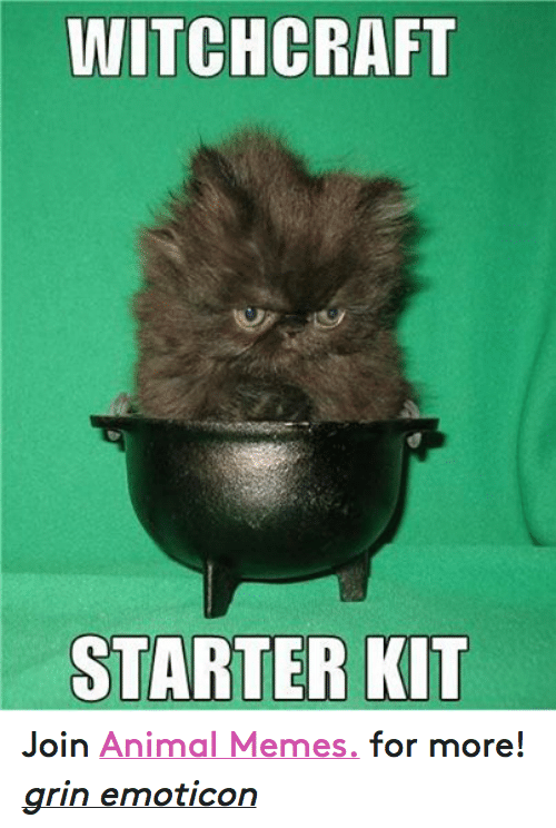 Animals, Anime, and Meme: WITCHCRAFT  STARTER KIT Join Animal Memes. for more! grin emoticon