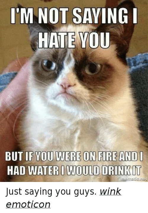 Im Not Saying I Hate You But: I'M NOT SAYING I  HATE YOU  BUT IF YOU WERE ON FIRE AND I  HAD WATERI WOULD DRINKIT Just saying you guys. wink emoticon