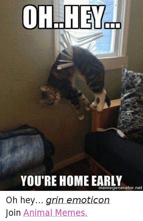 Animals, Anime, and Meme: OH HEY  YOU'RE HOME EARLY  memegenerator.net Oh hey… grin emoticon Join Animal Memes.