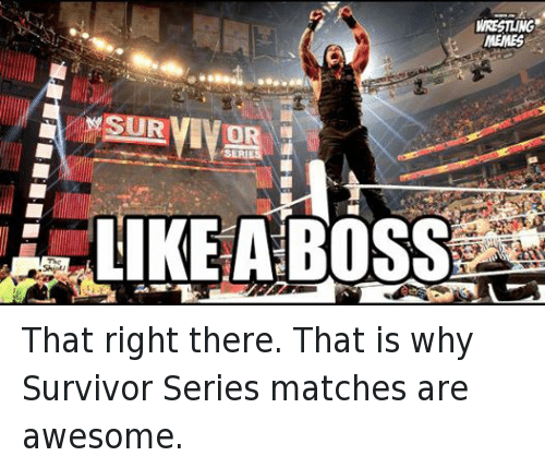 Survivor Series: SURVIVOR  WRESTLING  MEMES That right there. That is why Survivor Series matches are awesome.
