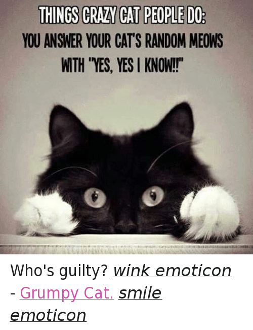 "Crazy Cat People: THINGS CRAZY CAT PEOPLE DO  YOU ANSWER YOUR CATS RANDOM MEONS  WTH ""YES, YES I KNOW!!"" Who's guilty? wink emoticon - Grumpy Cat. smile emoticon"