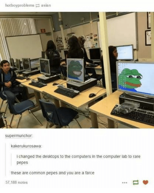 Rare Pepe: hotboy problems asian  supermunchor:  kakerukurosawa  i changed the desktops to the computers in the computer lab to rare  pepes  these are common pepes and you are a farce  57,188 notes