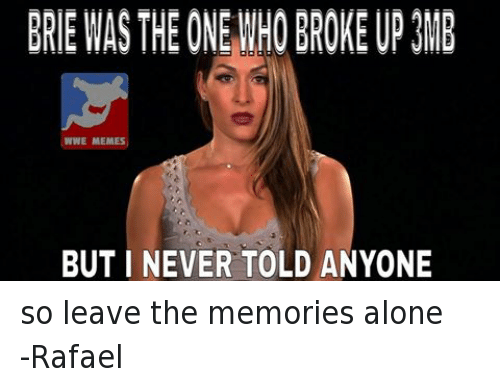 Wwe Memes: BRIE WASTHE ONEWHO BROKE UP3MB  WWE MEMES  BUT I NEVER TOLD ANYONE so leave the memories alone-Rafael