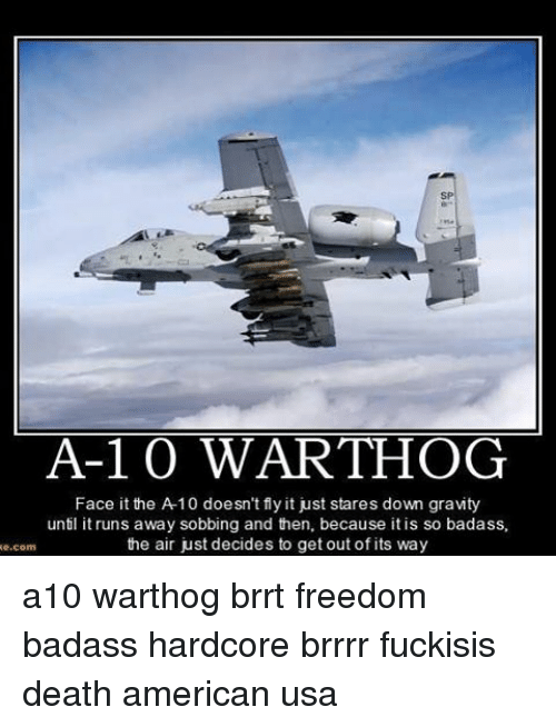 a10 warthog: A-1 0 WART-HOG  Face it the A 10 doesn't fly it just stares down gravity  until it runs away sobbing and then, because itis so badass,  the air just decides to get out of its way  com a10 warthog brrt freedom badass hardcore brrrr fuckisis death american usa
