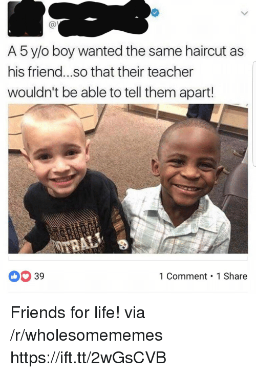 O Boy: A 5 y/o boy wanted the same haircut as  his friend...so that their teacher  wouldn't be able to tell them apart!  39  1 Comment 1 Share Friends for life! via /r/wholesomememes https://ift.tt/2wGsCVB