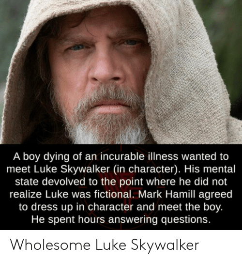 Luke Skywalker, Mark Hamill, and Dress: A boy dying of an incurable illness wanted to  meet Luke Skywalker (in character). His mental  state devolved to the point where he did not  realize Luke was fictional. Mark Hamill agreed  to dress up in character and meet the boy.  He spent hours answering questions. Wholesome Luke Skywalker