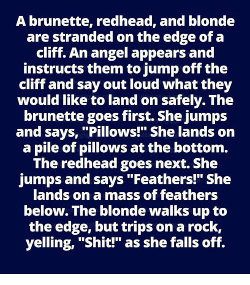 "Memes, Shit, and Angel: A brunette, redhead, and blonde  are stranded on the edge of a  cliff. An angel appears and  instructs them to jump off the  cliff and say out loud what they  would like to land on safely. The  brunette goes first. She jumps  and says, ""Pillows!"" She lands on  a pile of pillows at the bottom.  The redhead goes next. She  jumps and says ""Feathers!"" She  lands on a mass of feathers  below. The blonde walks up to  the edge, but trips on a rock,  yelling, ""Shit!"" as she falls off."