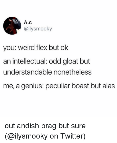 Flexing, Memes, and Twitter: A.c  @ilysmooky  you: weird flex but ok  an intellectual: odd gloat but  understandable nonetheless  me, a genius: peculiar boast but alas outlandish brag but sure (@ilysmooky on Twitter)