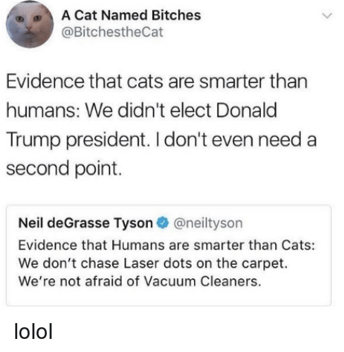 cleaners: A Cat Named Bitches  @BitchestheCat  Evidence that cats are smarter than  humans: We didn't elect Donald  Trump president. I don't even need a  second point.  Neil deGrasse Tyson@neiltyson  Evidence that Humans are smarter than Cats:  We don't chase Laser dots on the carpet.  We're not afraid of Vacuum Cleaners. lolol
