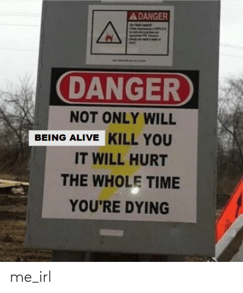 Whole Time: A DANGER  DANGER  NOT ONLY WILL  BEING ALIVE KILL YOU  IT WILL HURT  THE WHOLE TIME  YOU'RE DYING me_irl