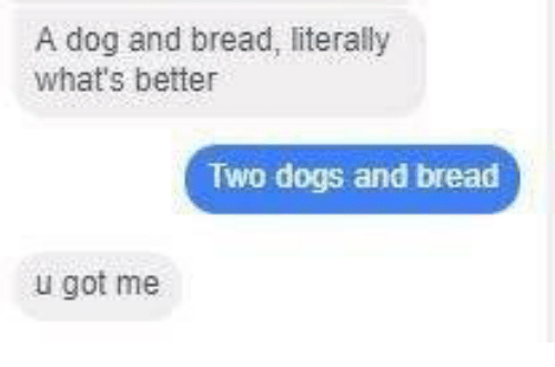 Dogs, Got, and Dog: A dog and bread, literally  what's better  Two dogs and bread  u got me