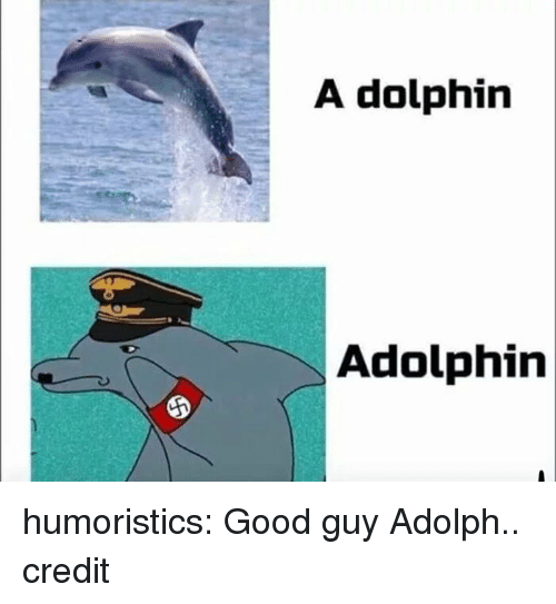 Memes, Reddit, and Tumblr: A dolphin  Adolphin humoristics:  Good guy Adolph.. credit