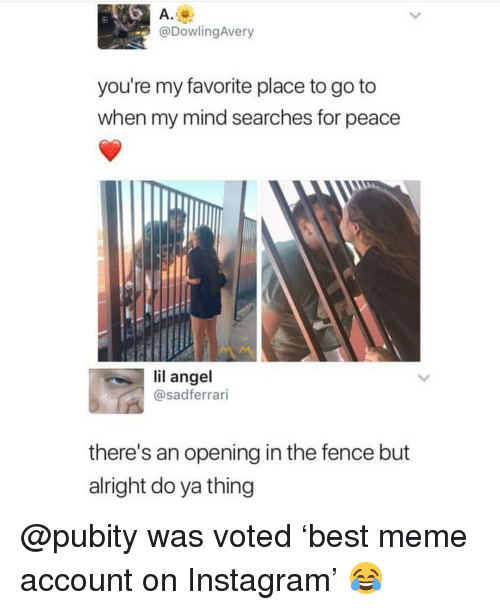Instagram, Meme, and Memes: A.  @DowlingAvery  you're my favorite place to go to  when my mind searches for peace  Il  lil angel  @sadferrari  there's an opening in the fence but  alright do ya thing @pubity was voted 'best meme account on Instagram' 😂