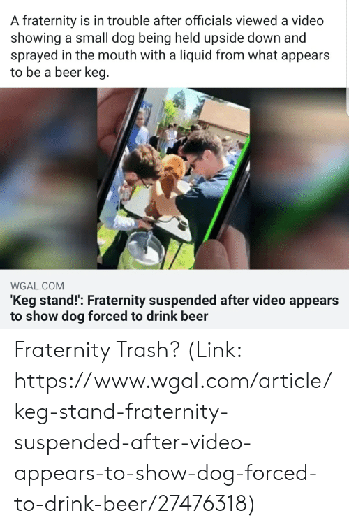 Beer, Fraternity, and Trash: A fraternity is in trouble after officials viewed a video  showing a small dog being held upside down and  sprayed in the mouth with a liquid from what appears  to be a beer keg.  WGAL.COM  Keg stand!': Fraternity suspended after video appears  to show dog forced to drink beer Fraternity Trash? (Link: https://www.wgal.com/article/keg-stand-fraternity-suspended-after-video-appears-to-show-dog-forced-to-drink-beer/27476318)