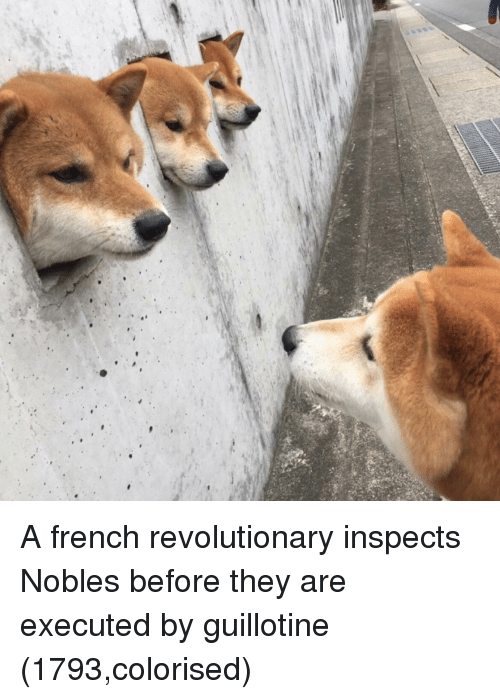French, Guillotine, and They: A french revolutionary inspects Nobles before they are executed by guillotine (1793,colorised)