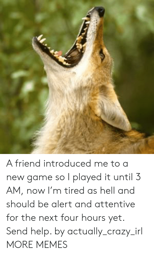 attentive: A friend introduced me to a new game so I played it until 3 AM, now I'm tired as hell and should be alert and attentive for the next four hours yet. Send help. by actually_crazy_irl MORE MEMES