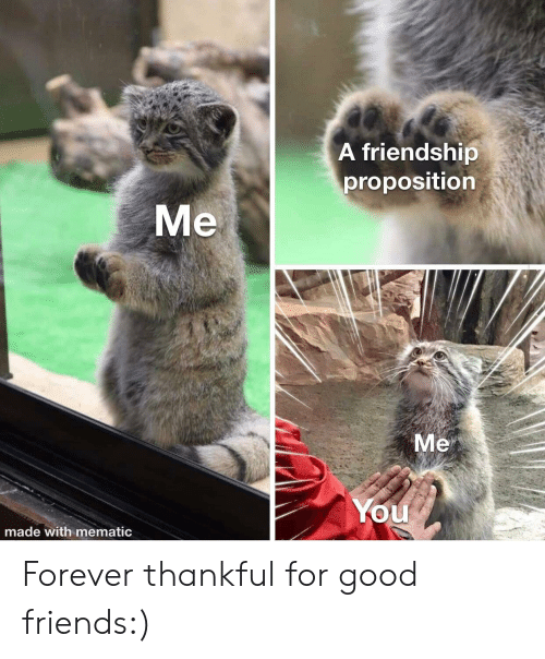Friends, Forever, and Good: A friendship  proposition  Me  Me  You  made with mematic Forever thankful for good friends:)