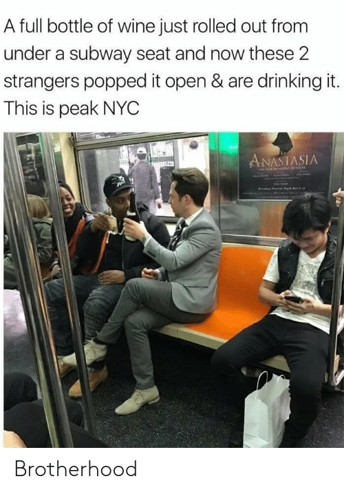 Drinking, Subway, and Wine: A full bottle of wine just rolled out from  under a subway seat and now these 2  strangers popped it open & are drinking it.  This is peak NYC  ANASTASIA  r P e Matc Brotherhood