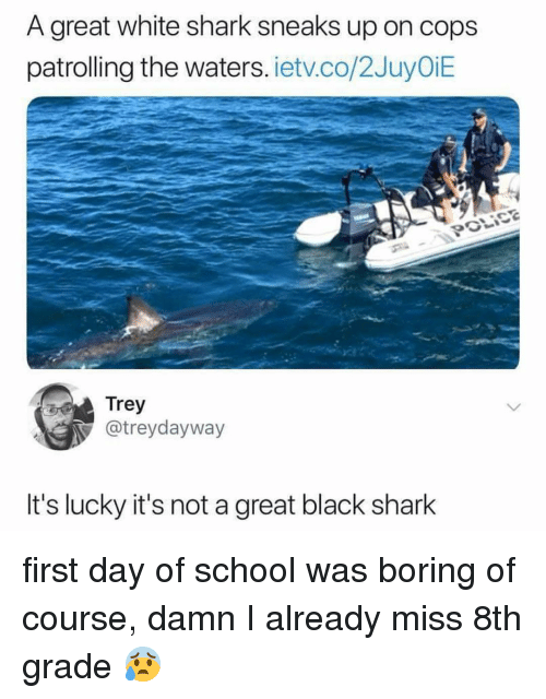 Memes, School, and Shark: A great white shark sneaks up on cops  patrolling the waters. ietv.co/2JuyOiE  Trey  @treydayway  t's lucky it's not a great black shark first day of school was boring of course, damn I already miss 8th grade 😰