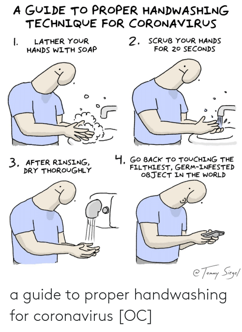 guide: a guide to proper handwashing for coronavirus [OC]