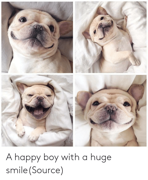 huge: A happy boy with a huge smile(Source)