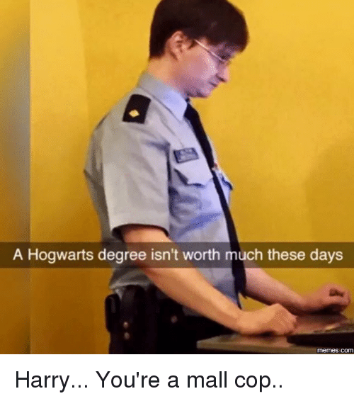 mall cop: A Hogwarts degree isn't worth much these days  COM Harry... You're a mall cop..