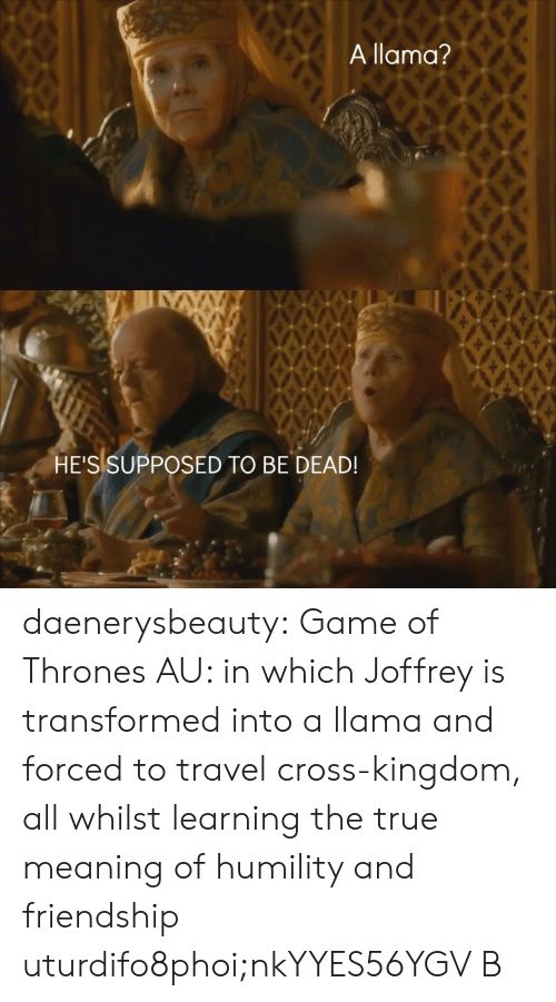 whilst: A llama?   HE'S SUPPOSED TO BE DEAD! daenerysbeauty: Game of Thrones AU: in which Joffrey is transformed into a llama and forced to travel cross-kingdom, all whilst learning the true meaning of humility and friendship  uturdifo8phoi;nkYYES56YGV B