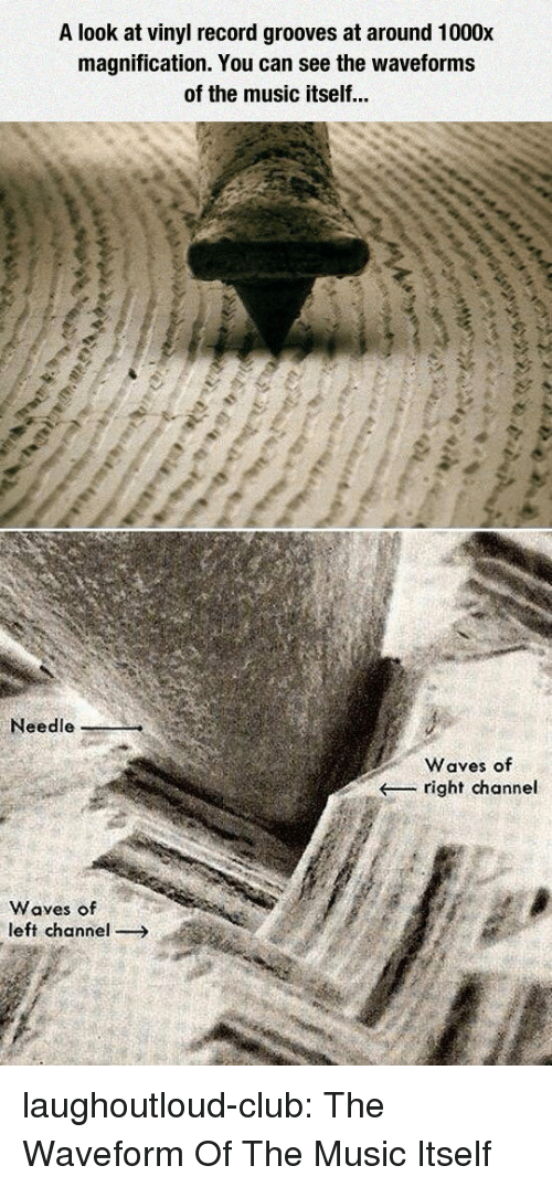 vinyl: A look at vinyl record grooves at around 1000x  magnification. You can see the waveforms  of the music itself...  Needle  Waves of  right channel  Waves of  left channel laughoutloud-club:  The Waveform Of The Music Itself