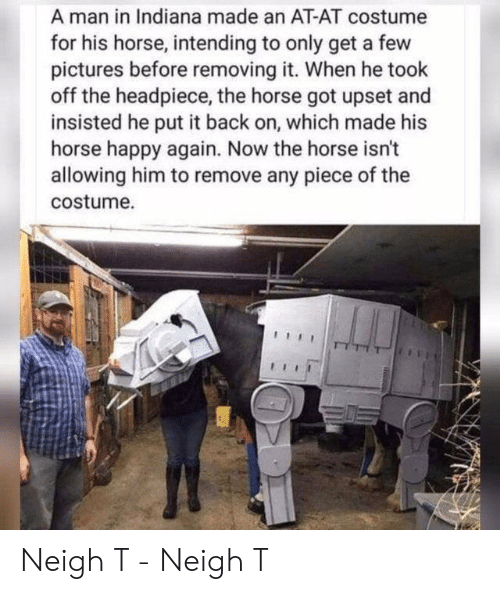 Indiana: A man in Indiana made an AT-AT costume  for his horse, intending to only get a few  pictures before removing it. When he took  off the headpiece, the horse got upset and  insisted he put it back on, which made his  horse happy again. Now the horse isn't  allowing him to remove any piece of the  costume. Neigh T - Neigh T