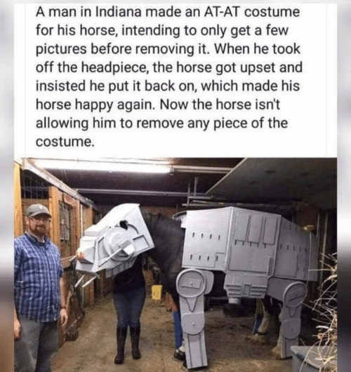 At-At, Happy, and Horse: A man in Indiana made an AT-AT costume  for his horse, intending to only get a few  pictures before removing it. When he took  off the headpiece, the horse got upset and  insisted he put it back on, which made his  horse happy again. Now the horse isn't  allowing him to remove any piece of the  costume.