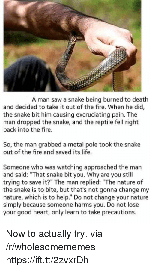 """Fire, Life, and Saw: A man saw a snake being burned to death  and decided to take it out of the fire. When he did,  the snake bit him causing excruciating pain. The  man dropped the snake, and the reptile fell right  back into the fire.  So, the man grabbed a metal pole took the snake  out of the fire and saved its life.  Someone who was watching approached the man  and said: """"That snake bit you. Why are you still  trying to save it?"""" The man replied: """"The nature of  the snake is to bite, but that's not gonna change my  nature, which is to help."""" Do not change your nature  simply because someone harms you. Do not lose  your good heart, only learn to take precautions. Now to actually try. via /r/wholesomememes https://ift.tt/2zvxrDh"""