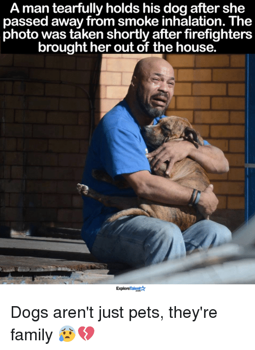 Inhale The: A man tearfully holds his dog after she  passed away from smoke inhalation. The  photo was taken shortly after firefighters  brought her out of the house.  Explore  Ar Dogs aren't just pets, they're family 😰💔