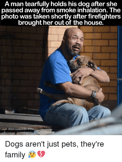 Inhale The: A man tearfully holds his dog after she  passed away from smoke inhalation. The  photo was taken shortly after firefighters  brought her out of the house. Dogs aren't just pets, they're family 😰💔