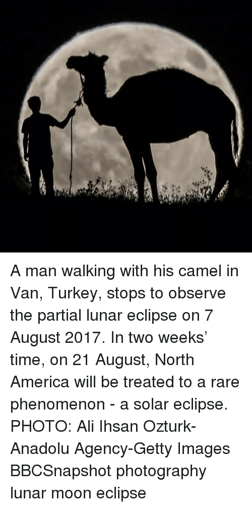 Vanning: A man walking with his camel in Van, Turkey, stops to observe the partial lunar eclipse on 7 August 2017. In two weeks' time, on 21 August, North America will be treated to a rare phenomenon - a solar eclipse. PHOTO: Ali Ihsan Ozturk-Anadolu Agency-Getty Images BBCSnapshot photography lunar moon eclipse