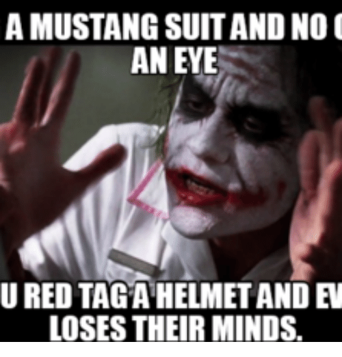 Mustang Mustangs And Loses Their Mind A MUSTANG SUITAND NO AN EYE LOSES THEIR MINDS