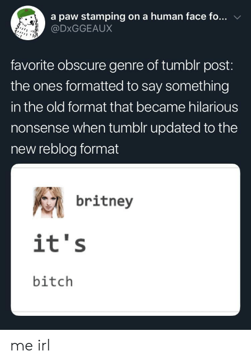 tumblr post: a paw stamping on a human face fo...  @DxGGEAUX  favorite obscure genre of tumblr post:  the ones formatted to say something  in the old format that became hilarious  nonsense when tumolr updated to the  new reblog format  britney  it's  bitch me irl