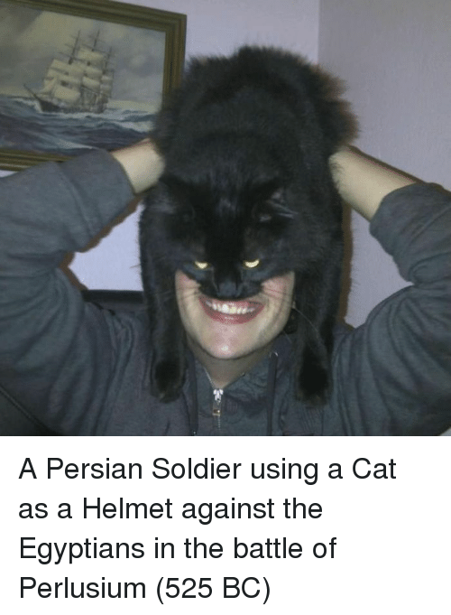 Persian, Cat, and Helmet: A Persian Soldier using a Cat as a Helmet against the Egyptians in the battle of Perlusium (525 BC)
