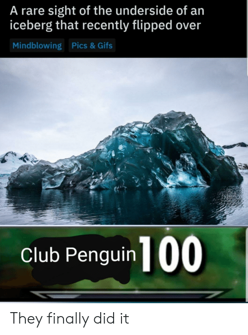 flipped: A rare sight of the underside of an  iceberg that recently flipped over  Mindblowing Pics& Gifs  club Penguin 100 They finally did it