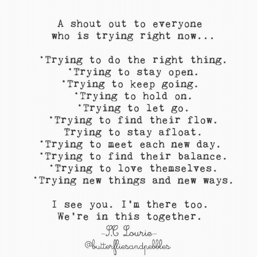 Love, Memes, and Do the Right Thing: A shout out to everyone  who is trying right now. . .  Trying to do the right thing.  Trying to stay open.  Trying to keep going.  Trying to hold on.  Trying to let go  Trying to find their flow.  Trying to stay afloat.  Trying to meet  each new day.  Trying to find their balance.  Trying to love themselves.  Trying new things and new ways  I see you. I'm there too.  We're in this together.  son