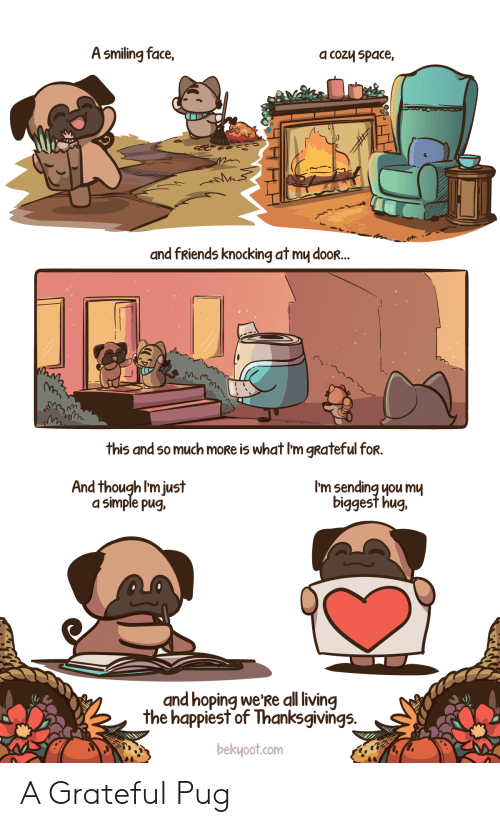 Knocking: A smiling face,  a cozy space,  and fRiends knocking at my dooR...  this and so much moRe is what I'm gRateful for.  I'm sending you mu  biggest hug.  And though I'm just  a simple pug,  and hoping we'Re all living  the happiest of Thanksgivings.  bekyoot.com A Grateful Pug