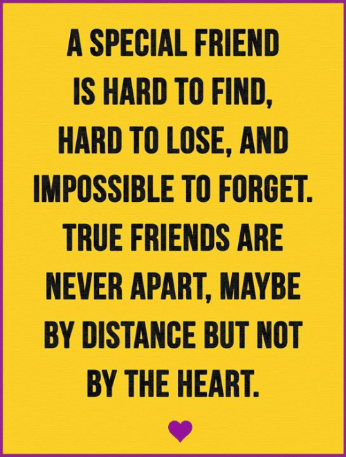 Friends, Memes, and True: A SPECIAL FRIEND  IS HARD TO FIND,  HARD TO LOSE, AND  IMPOSSIBLE TO FORGET.  TRUE FRIENDS ARE  NEVER APART, MAYBE  BY DISTANCE BUT NOT  BY THE HEART.