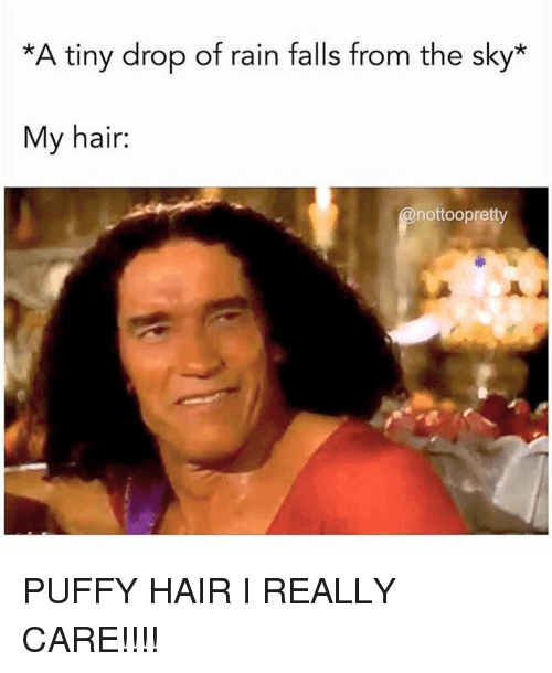 Hair, Rain, and Girl Memes: *A tiny drop of rain falls from the sky*  My hair:  nottoopretty PUFFY HAIR I REALLY CARE!!!!