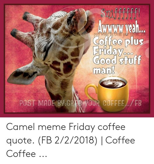 🅱️ best memes about coffee quote coffee quote memes
