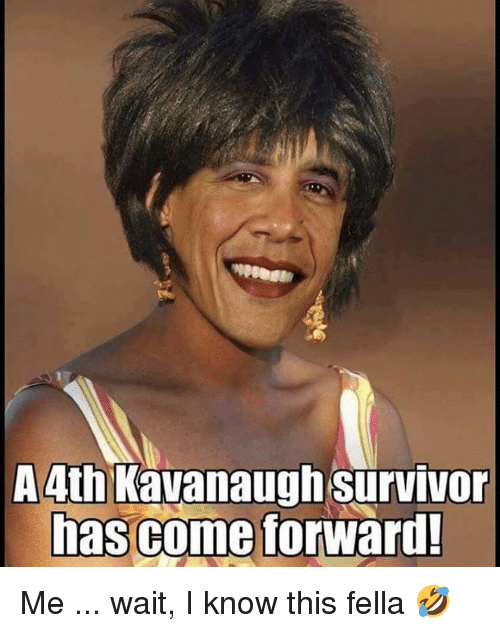 Memes, Survivor, and Fella: A4th Kavanaugh survivor  has come  forward! Me ... wait, I know this fella 🤣