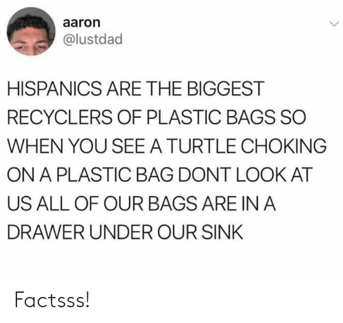 Memes, Turtle, and A Plastic Bag: aaron  @lustdad  HISPANICS ARE THE BIGGEST  RECYCLERS OF PLASTIC BAGS SO  WHEN YOU SEE A TURTLE CHOKING  ON A PLASTIC BAG DONT LOOK AT  US ALL OF OUR BAGS ARE IN A  DRAWER UNDER OUR SINK Factsss!