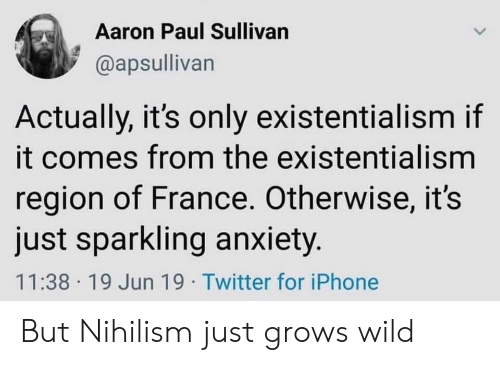 Iphone, Twitter, and Aaron Paul: Aaron Paul Sullivan  @apsullivan  Actually, it's only existentialism if  it comes from the existentialism  region of France. Otherwise, it's  just sparkling anxiety.  11:38 19 Jun 19 Twitter for iPhone But Nihilism just grows wild