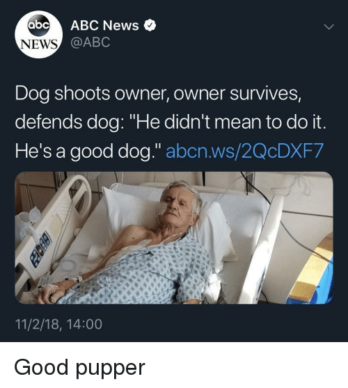 """Abc, News, and Abc News: abc ABC News o  @ABC  NEWS  Dog shoots owner, owner survives,  defends dog: """"He didn't mean to do it  He's a good dog."""" abcn.ws/2QcDXF7  11/2/18, 14:00 Good pupper"""